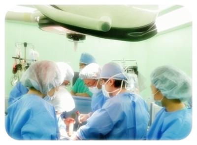 단독 간이식 성공